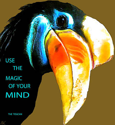 Believe Toucan Poster by Debra     Vatalaro