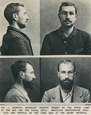 Bertillon System Photographs Taken Poster by Everett