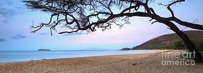 Big Beach Maui Hawaii Poster by Dustin K Ryan