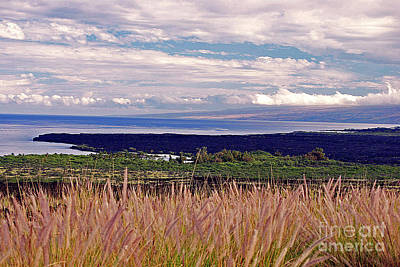 Big Island Landscape 1 Poster