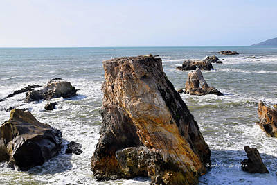 Big Rocks In Grey Water Poster by Barbara Snyder