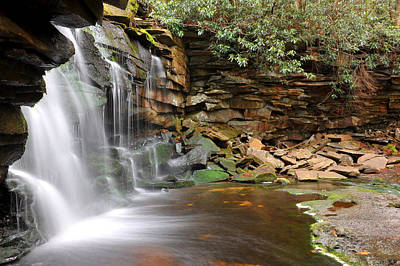 Poster featuring the photograph Blackwater Falls by Dung Ma