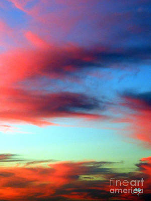 Poster featuring the photograph Blushed Sky by Linda Hollis