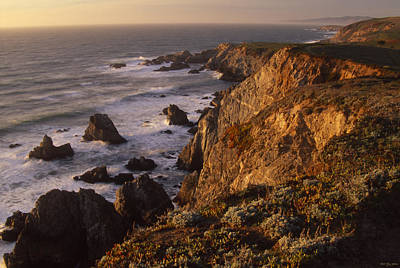 Bodega Head Poster by Soli Deo Gloria Wilderness And Wildlife Photography
