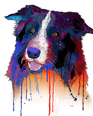 Border Collie Poster by Marlene Watson