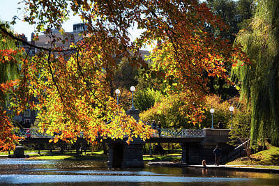 Poster featuring the photograph Boston Public Garden - Lagoon Bridge by Joann Vitali