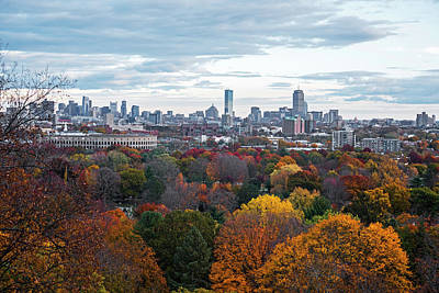 Boston Through The Autumn Trees Boston Ma Poster by Toby McGuire
