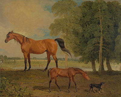 Broodmare With Foal, And A Terrier Poster by Benjamin Marshall