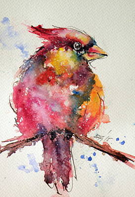 Cardinal Bird Poster by Kovacs Anna Brigitta