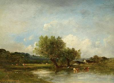 Cattle At A Pond Poster