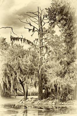 City Park Lagoon - Sepia Poster