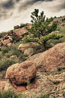 Colorado Rocky Mountains Poster by James BO  Insogna
