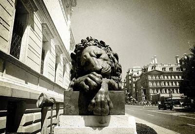 Corcoran Lion Poster