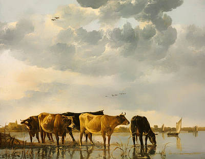 Cows In A River Poster by Mountain Dreams