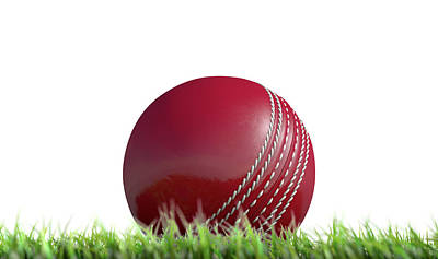 Cricket Ball Resting On Grass Poster