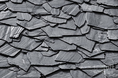 Dark Schist Blades Poster by Carlos Caetano