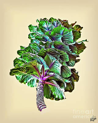 Poster featuring the photograph Decorative Cabbage by Walt Foegelle