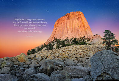Devils Tower Poster by Edwin Verin