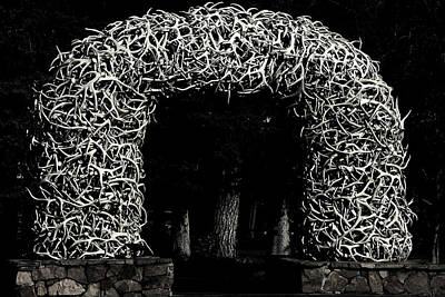 Elk Antlers Gate Jackson Hole Wy Poster