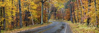 Fall Along Bohemian Road Poster by Twenty Two North Photography