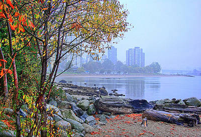 Fall At Stanley Park Poster