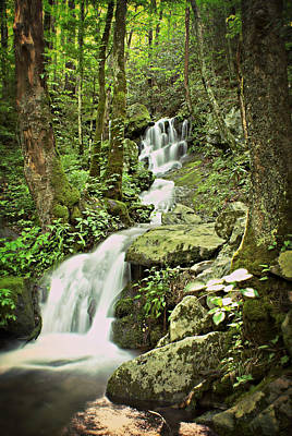 Falls In The Smokies Poster
