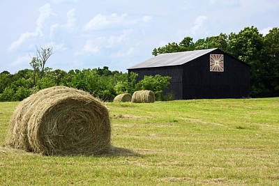 Farm Scene Poster by Sally Weigand