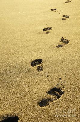 Footprints In The Sand Poster by Jelena Jovanovic