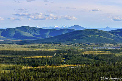 Forested Rolling Hills, Alaska, Usa Series Poster