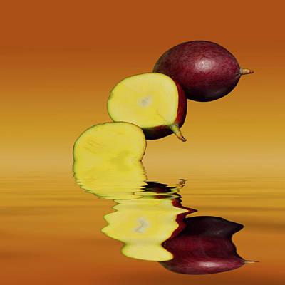 Fresh Ripe Mango Fruits Poster by David French