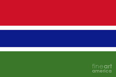 Gambia Flag Poster by Frederick Holiday
