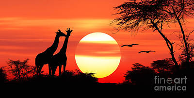 Giraffes At Sunset Poster