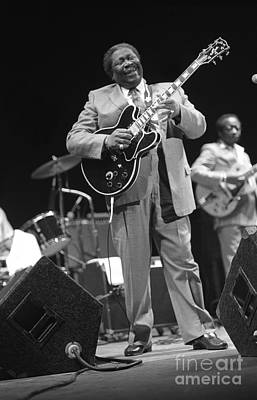 Guitarist Bb King Poster by Concert Photos