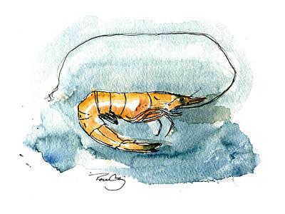 Gulf Shrimp Poster by Paul Gaj