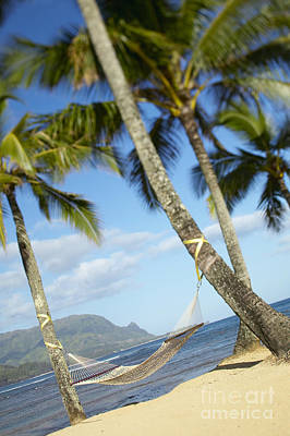 Hanalei Bay, Hammock Poster by Kyle Rothenborg - Printscapes