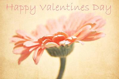 Happy Valentines Day Poster by Cathie Tyler
