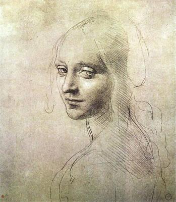 Head Of A Girl Poster by Leonardo da Vinci