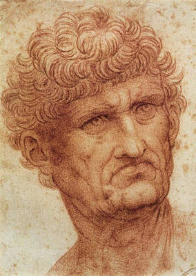 Head Of A Man Poster by Leonardo da Vinci
