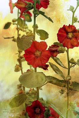 Hollyhocks Poster by Theresa Campbell