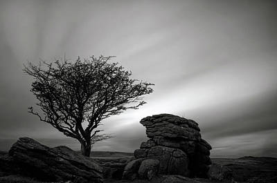 Holwell Tor And Lone Tree On Dartmoor Poster