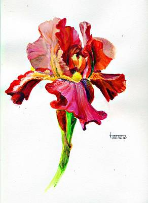Iris Poster by Jimmie Trotter