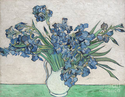 Irises, 1890 Poster by Vincent Van Gogh