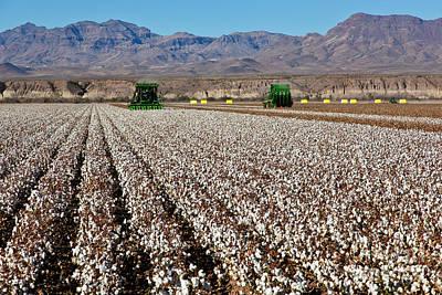 John Deere Cotton Pickers Harvesting Poster by Inga Spence