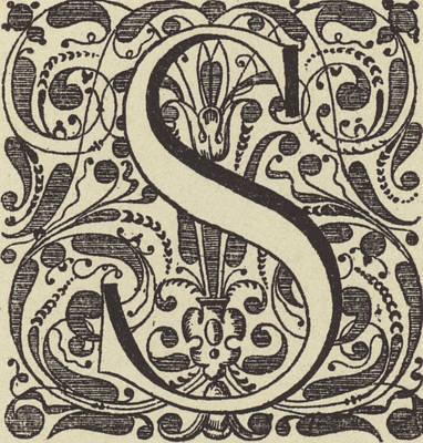 Letter S Poster