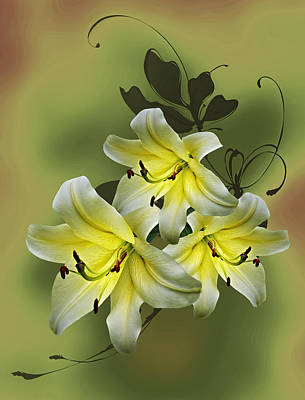 Lily Trio Poster by Judy Johnson