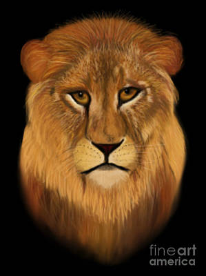Lion - The King Of The Jungle Poster