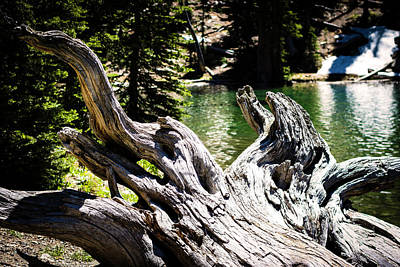 Lower Norton Lake, Idaho Poster by M Images Fine Art Photography and Artwork