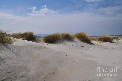Luskentyre Sand Dunes Poster by Nichola Denny