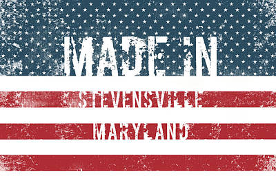 Made In Stevensville, Maryland Poster