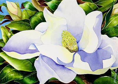 Magnolia In Leaves Poster by Janis Grau